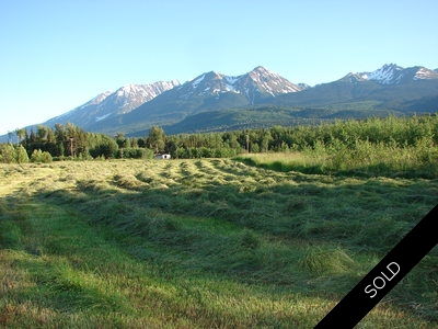Smithers BC Ranch for sale by Charlie McClary RE/MAX Bulkley Valley